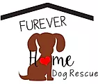 Furever Home Dog Rescue logo